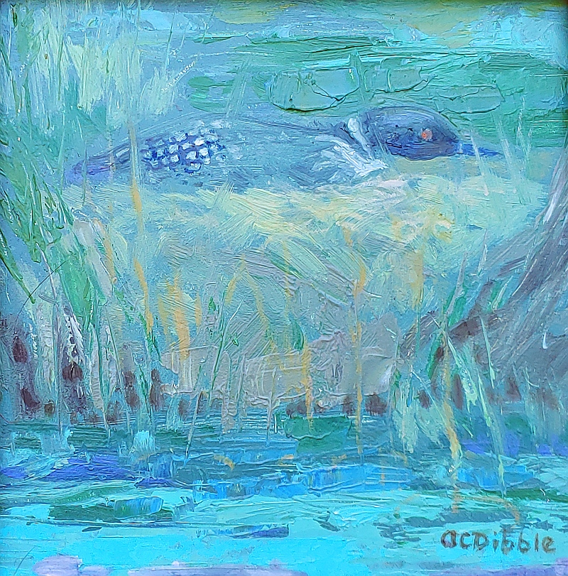 -Loon on her nest, by Alison C. Dibble, oil on panel 6 x 6 inches_4544