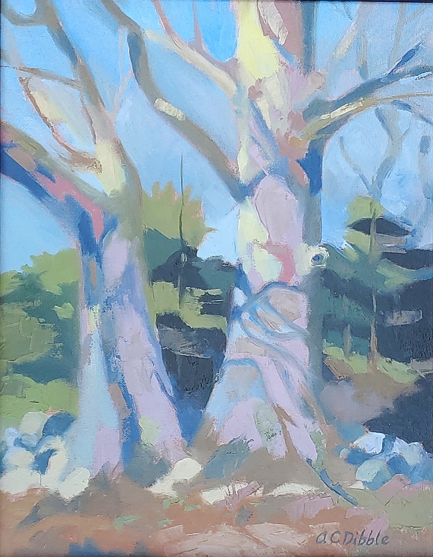Louise's oak, late morning sun, fine art oil painting Alison Dibble Maine artist